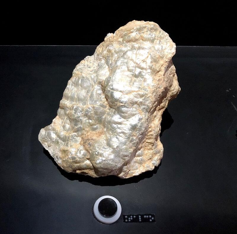 """Uma amostra de mineral próxima à um botão de acionamento, com etiqueta em Braille ao lado escrito """"Talco""""."""